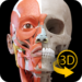 Muscle | Skeleton – 3D Atlas of Anatomy  APK Free Download (Android APP)