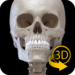 Skeleton   3D Anatomy  APK Download (Android APP)