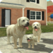 Dog Sim Online: Raise a Family  APK Download (Android APP)