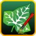 Ivy Draw: Vector Drawing  APK Download (Android APP)