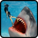 Scary Shark Evolution 3D  APK Download (Android APP)