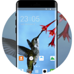 Theme for Oppo Neo 7 1.0.1 APK Download (Android APP)