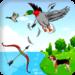 Archery bird hunter 2.7.13 APK Download (Android APP)