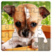 Dogs Jigsaw Puzzles Game – For Kids & Adults 🐶 20.8 APK Download (Android APP)